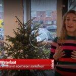 Diëtist Eveline vertelt bij Editie NL hoe je van je kerstkilo's af komt